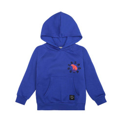 Soft Gallery hooded sweater (va.104)