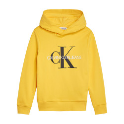 Calvin Klein hooded sweater